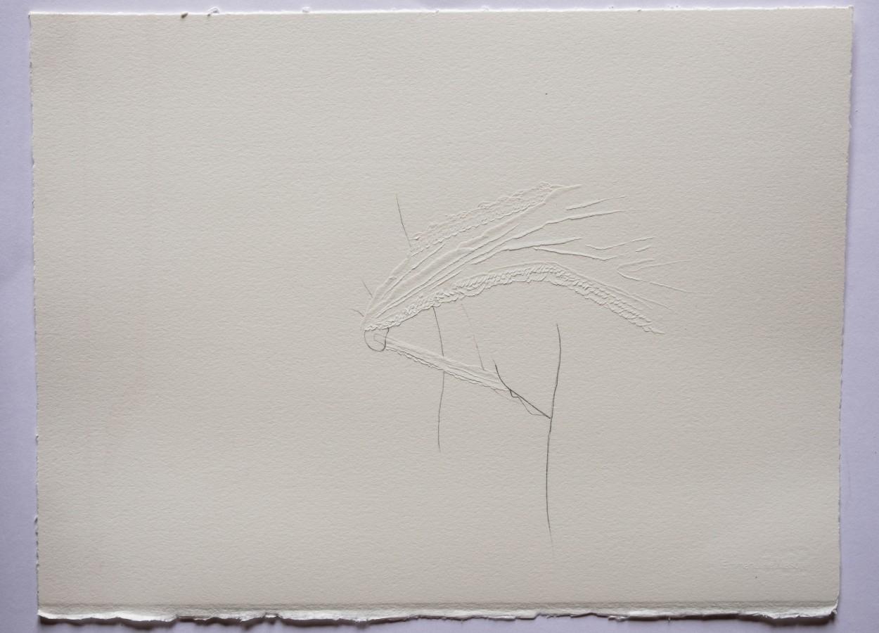 Cut6-dessin-et-découpe-au-scalpel-sur-papier-Arches-320g.-30x40-cm.-2017.jpg