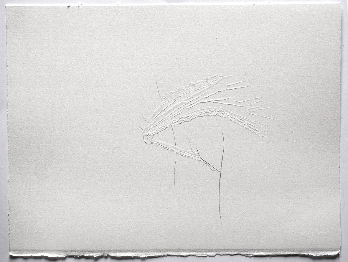 Cut6-dessin-et-découpe-au-scalpel-sur-papier-Arches-320g.-30x40-cm.-2017web.jpg